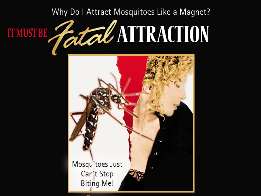 Fatal-Attraction-Web