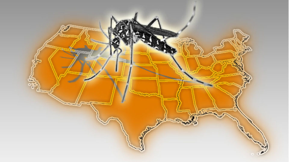 Unwanted In The US The Asian Tiger Mosquito Mosquito Traps - Mosquito map us